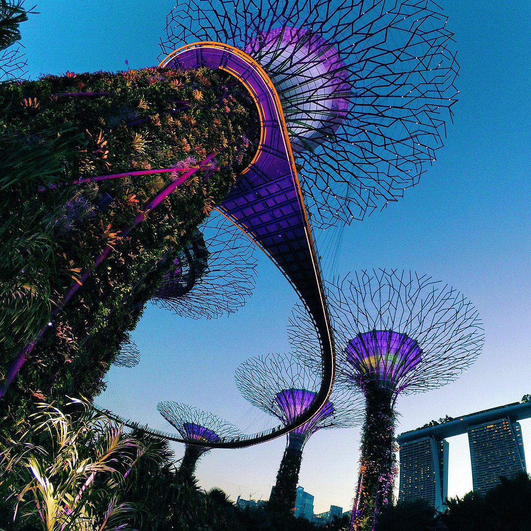 Singapore Grandprix: Explore beautiful Singapore